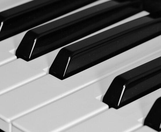 piano tuning company in chicago, piano restoration company in chicago, piano tuning chicago