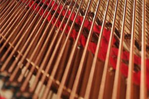 piano tuning in chicago, chicago professional piano tuning, professional piano tuning